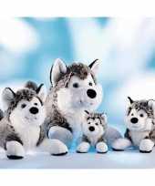 Grijs met witte husky knuffel 30 cm hond